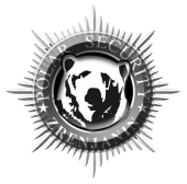 polar security